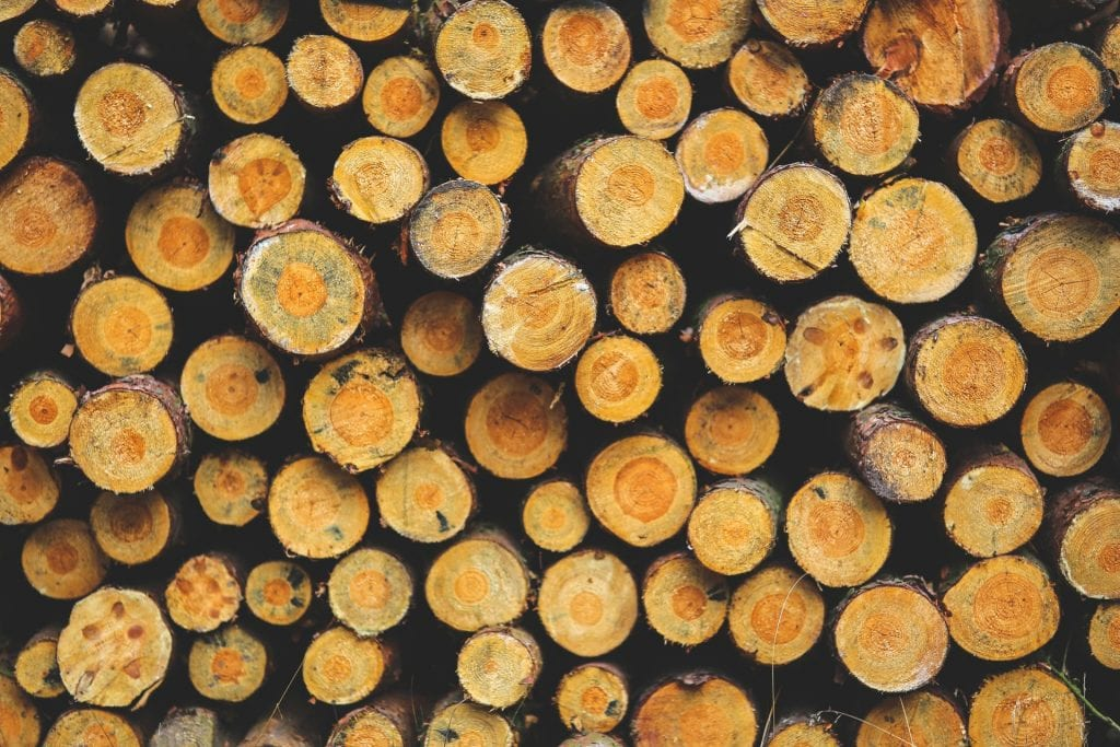 wood-forest-fire-fireplace.jpg